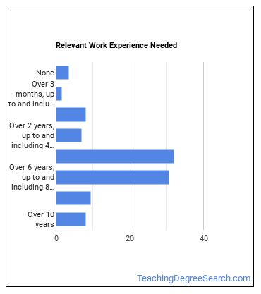 Curator Work Experience