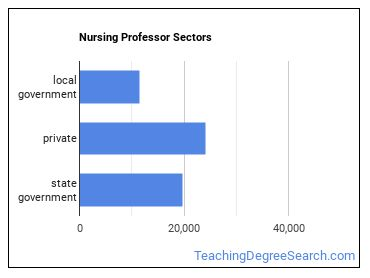 Nursing Professor Sectors