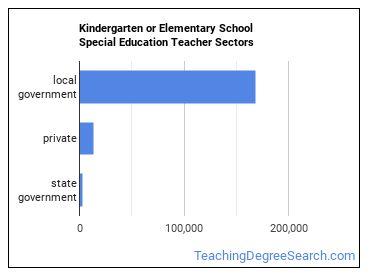 Kindergarten or Elementary School Special Education Teacher Sectors