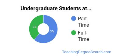 Full-Time vs. Part-Time Undergraduate Students at  ASU - Skysong