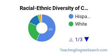 Racial-Ethnic Diversity of CNM Undergraduate Students