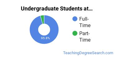 Full-Time vs. Part-Time Undergraduate Students at  Drake