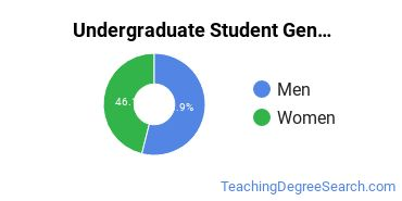Undergraduate Student Gender Diversity at  MSU Bozeman