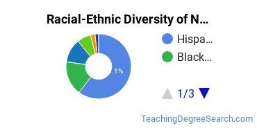 Racial-Ethnic Diversity of NLU Undergraduate Students