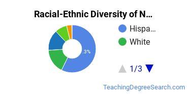 Racial-Ethnic Diversity of New Mexico Highlands University Undergraduate Students