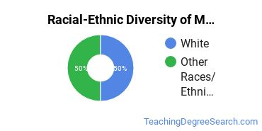 Racial-Ethnic Diversity of Multilingual Education Majors at The College at Brockport