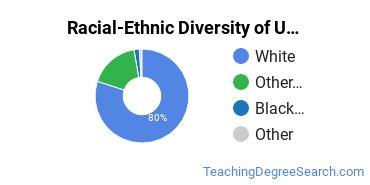 Racial-Ethnic Diversity of UMary Undergraduate Students