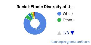 Racial-Ethnic Diversity of USD Undergraduate Students