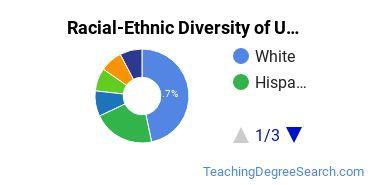 Racial-Ethnic Diversity of USF Tampa Undergraduate Students