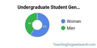 Undergraduate Student Gender Diversity at  UW Oshkosh