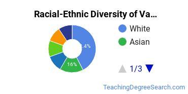 Racial-Ethnic Diversity of Vanderbilt Undergraduate Students