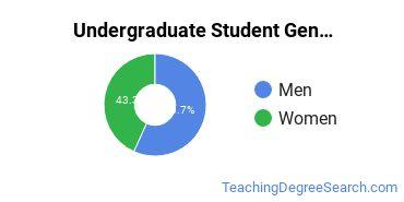 Undergraduate Student Gender Diversity at  Virginia Tech