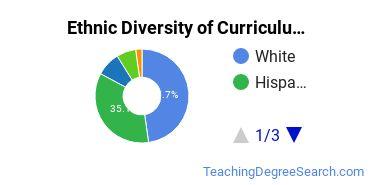 Curriculum & Instruction Majors in CA Ethnic Diversity Statistics