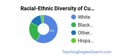 Racial-Ethnic Diversity of Curriculum & Instruction Students with Bachelor's Degrees