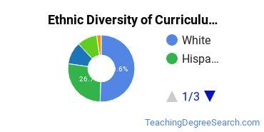 Curriculum & Instruction Majors in NV Ethnic Diversity Statistics