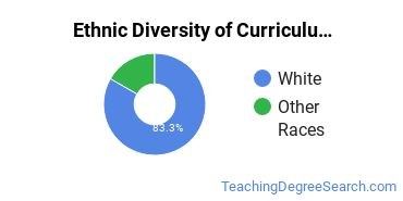 Curriculum & Instruction Majors in NJ Ethnic Diversity Statistics