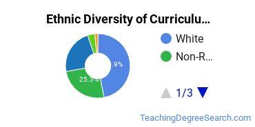 Curriculum & Instruction Majors in SC Ethnic Diversity Statistics