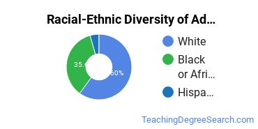 Racial-Ethnic Diversity of Adult and Continuing Education Administration Doctor's Degree Students