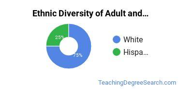 Adult Education Administration Majors in GA Ethnic Diversity Statistics