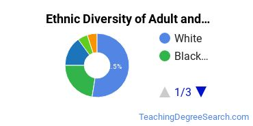Adult Education Administration Majors in IL Ethnic Diversity Statistics