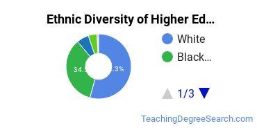 Higher Education Administration Majors in GA Ethnic Diversity Statistics