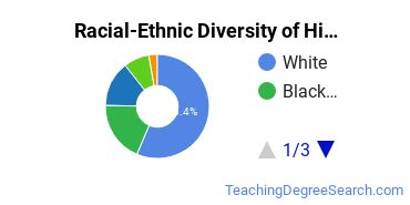 Racial-Ethnic Diversity of Higher Education/Higher Education Administration Master's Degree Students