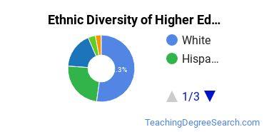 Higher Education Administration Majors in TX Ethnic Diversity Statistics