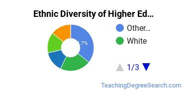 Higher Education Administration Majors in VT Ethnic Diversity Statistics