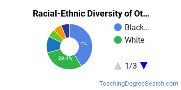 Racial-Ethnic Diversity of Other Educational Assessment, Evaluation, and Research Students with Bachelor's Degrees
