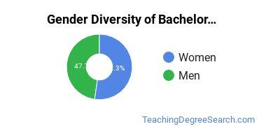 Gender Diversity of Bachelor's Degrees in Instructional Media