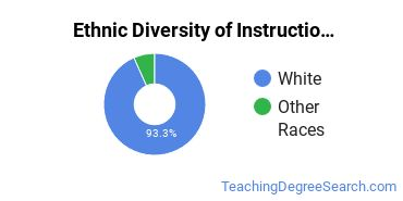 Instructional Media Design Majors in ME Ethnic Diversity Statistics