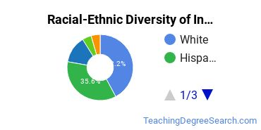 Racial-Ethnic Diversity of Instructional Media Undergraduate Certificate Students