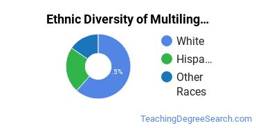 Multilingual Education Majors in CT Ethnic Diversity Statistics