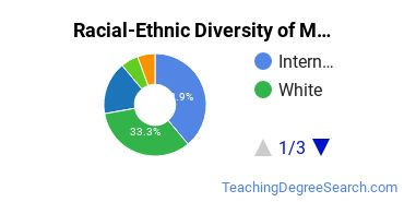 Racial-Ethnic Diversity of Multilingual Education Doctor's Degree Students