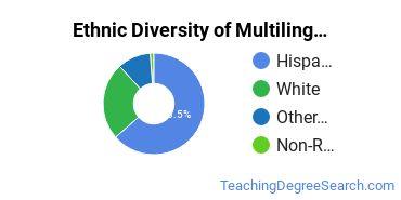 Multilingual Education Majors in IL Ethnic Diversity Statistics