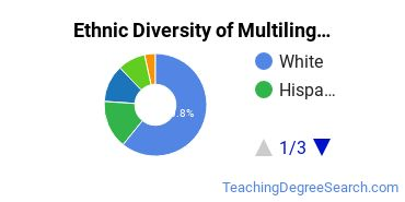 Multilingual Education Majors in IN Ethnic Diversity Statistics