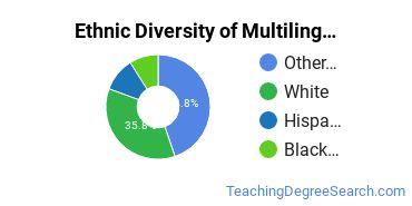 Multilingual Education Majors in MD Ethnic Diversity Statistics