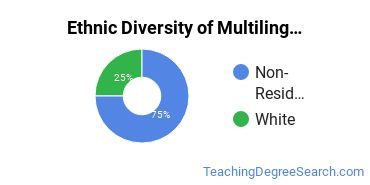 Multilingual Education Majors in MA Ethnic Diversity Statistics