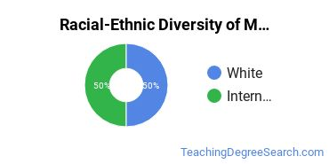 Racial-Ethnic Diversity of Multicultural Education Students with Bachelor's Degrees