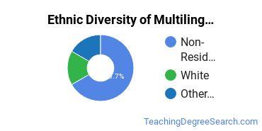 Multilingual Education Majors in OK Ethnic Diversity Statistics