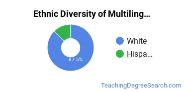 Multilingual Education Majors in PA Ethnic Diversity Statistics