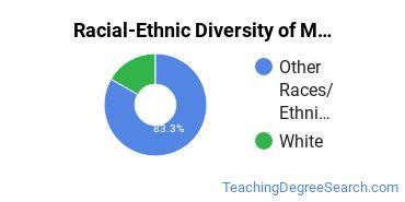 Racial-Ethnic Diversity of Multilingual Education Undergraduate Certificate Students