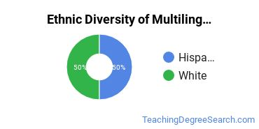 Multilingual Education Majors in WY Ethnic Diversity Statistics