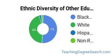 Other Education Majors in LA Ethnic Diversity Statistics