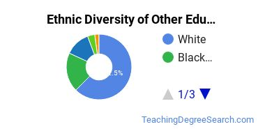 Other Education Majors in MN Ethnic Diversity Statistics