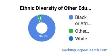Other Education Majors in MS Ethnic Diversity Statistics