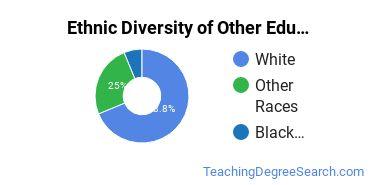 Other Education Majors in VT Ethnic Diversity Statistics