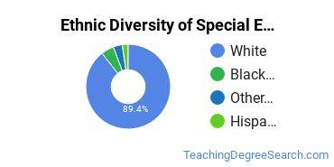 Special Education Majors in AR Ethnic Diversity Statistics