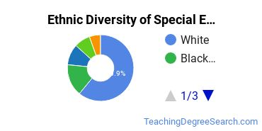 Special Education Majors in DC Ethnic Diversity Statistics