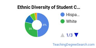 Student Counseling Majors in CA Ethnic Diversity Statistics